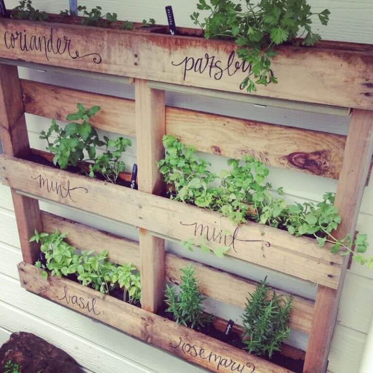 Use A Classic Pallet for the Herbs