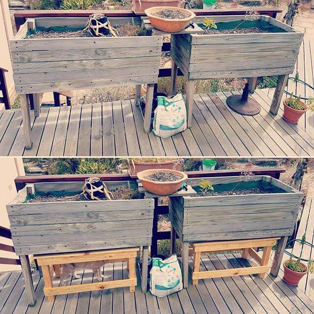 Pallet planters ideas for your home