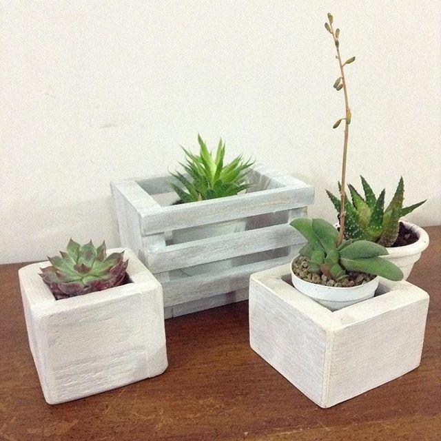 compilation of mini Pallet planters