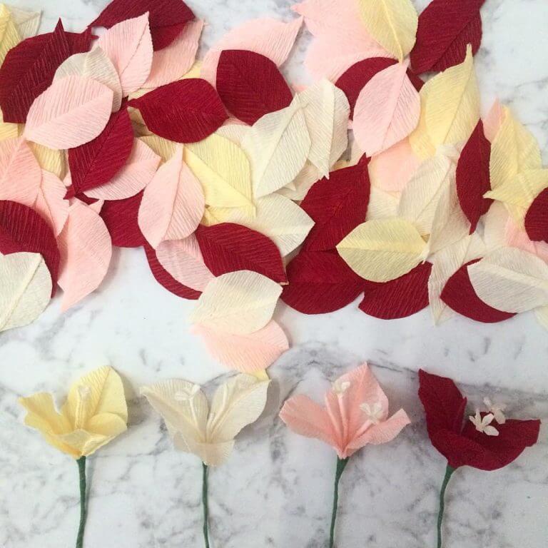 Bougainvillea stamens Paper Flowers.