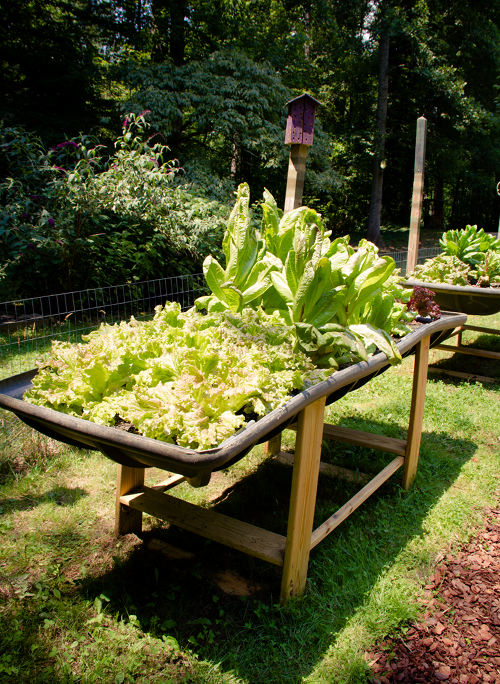 Create Your Personal Raised Bed applying Repurposed Resources