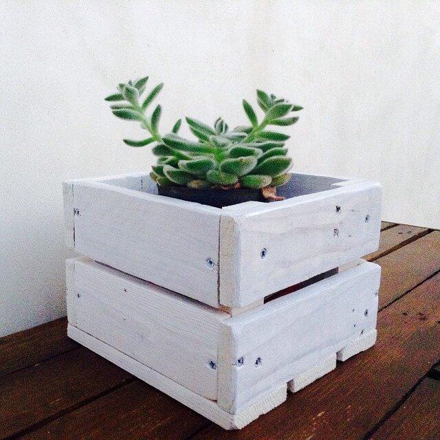 A compact mini DIY pallet planter