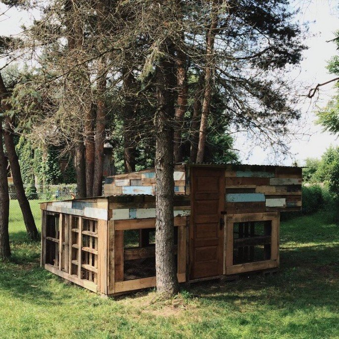 wooden pallet chicken coops
