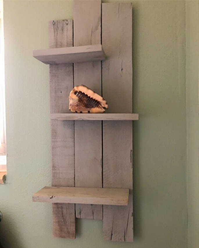 Creative and Innovative Pallet Shelf 2018