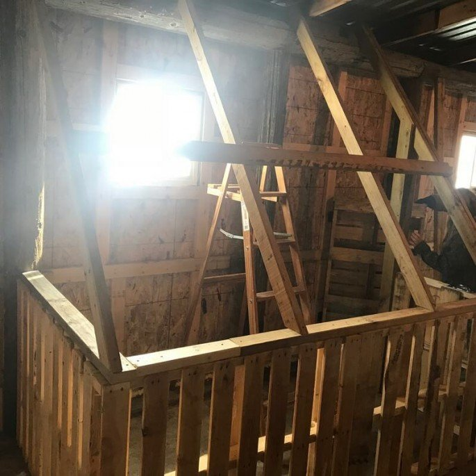 Step by step Pallet Chicken Coop Projects Ideas you can do yourself