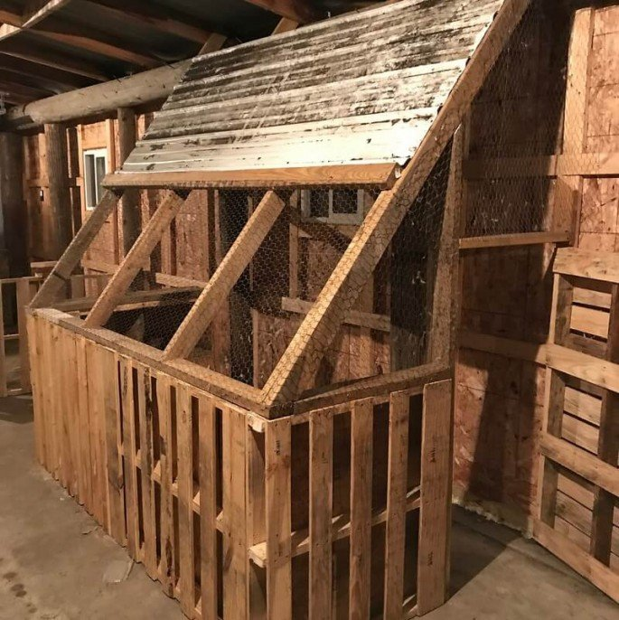 a frame chicken coop from pallets