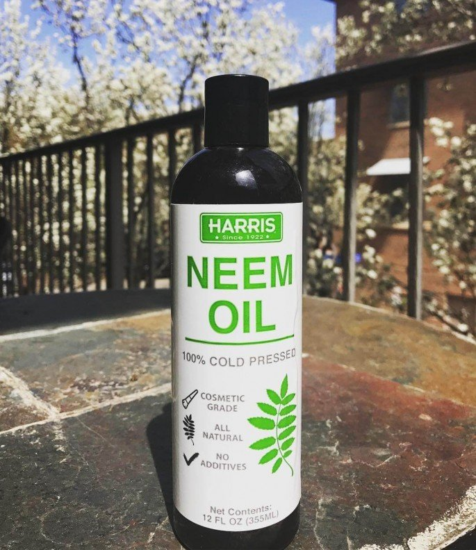 Benefits of Neem Oil for Hair Growth