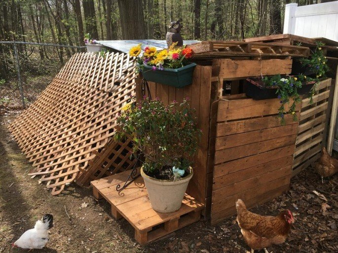 pallet chicken coop design ideas