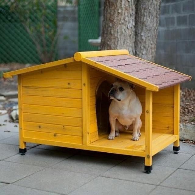 pallet pet house ideas