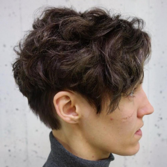 Super Short Curly Hairstyle Jaw- Grazing Bob Short Curly Hairstyles & Haircuts for Women