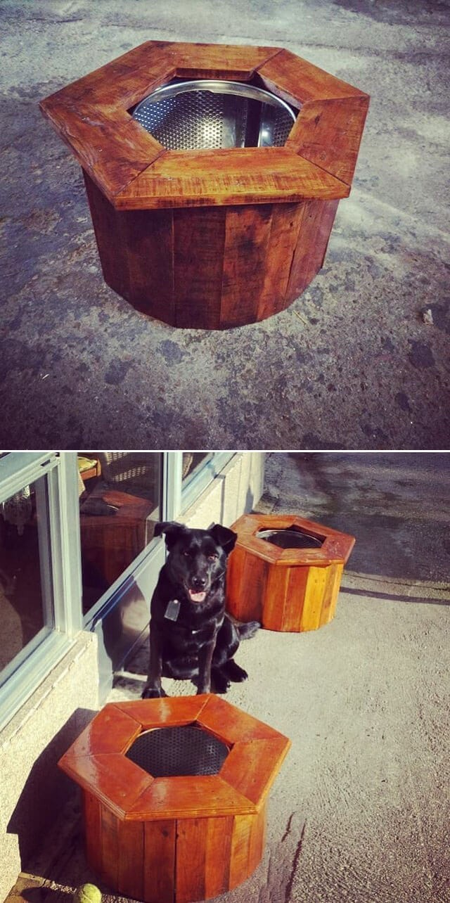 One level up pallet pet project ideas