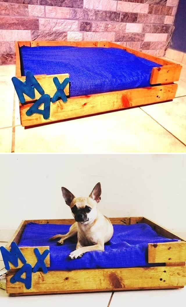 diy pallet pet bed ideas